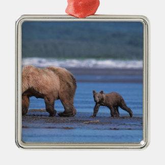 Brown Bear Ursus arctos Alaska Peninsula 2 Ornament