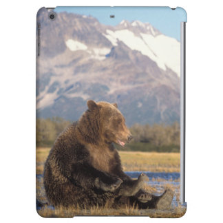 brown bear, Ursus arctos, grizzly bear, Ursus 2 iPad Air Cases