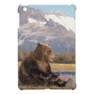 brown bear, Ursus arctos, grizzly bear, Ursus 2 iPad Mini Covers