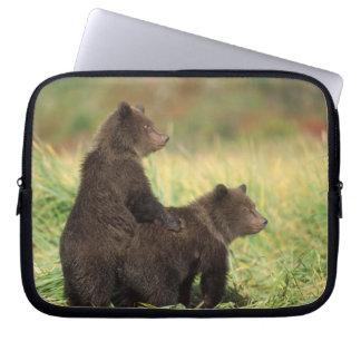 brown bear, Ursus arctos, grizzly bear, Ursus 2 Laptop Sleeve