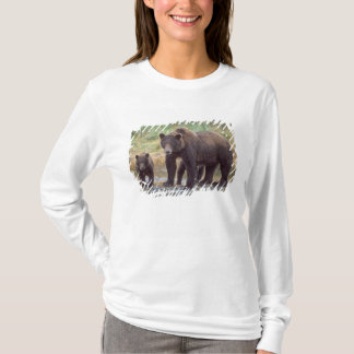 brown bear, Ursus arctos, grizzly bear, Ursus 3 T-Shirt