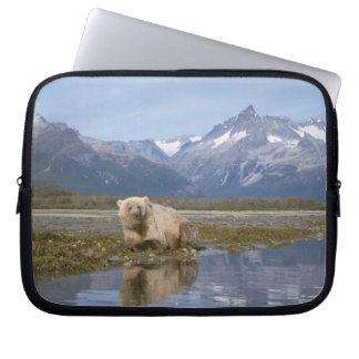 brown bear, Ursus arctos, grizzly bear, Ursus 4 Computer Sleeve