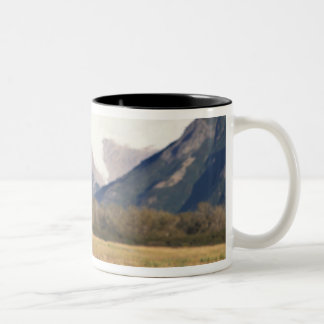 brown bear, Ursus arctos, grizzly bear, Ursus 5 Two-Tone Coffee Mug