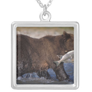 brown bear, Ursus arctos, grizzly bear, Ursus 6 Silver Plated Necklace