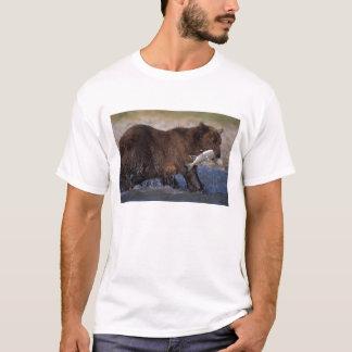 brown bear, Ursus arctos, grizzly bear, Ursus 6 T-Shirt
