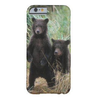brown bear, Ursus arctos, grizzly bear, Ursus 7 2 Barely There iPhone 6 Case