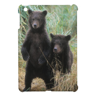 brown bear, Ursus arctos, grizzly bear, Ursus 7 2 Case For The iPad Mini