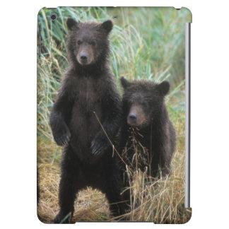 brown bear, Ursus arctos, grizzly bear, Ursus 7 2 iPad Air Covers