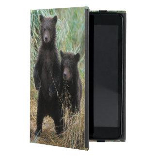 brown bear, Ursus arctos, grizzly bear, Ursus 7 2 iPad Mini Cases