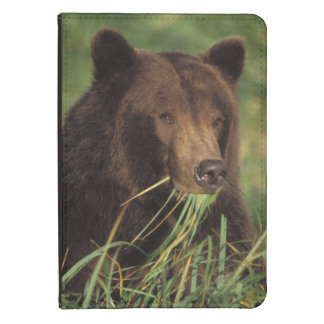 brown bear, Ursus arctos, grizzly bear, Ursus 7 Kindle Case