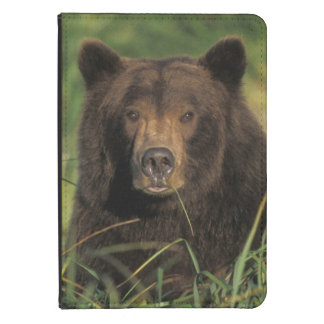 brown bear, Ursus arctos, grizzly bear, Ursus 9 Kindle Touch Cover