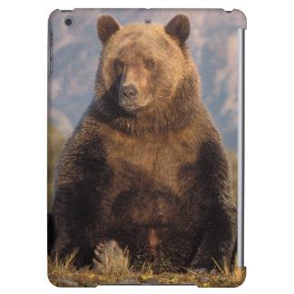 brown bear, Ursus arctos, grizzly bear, Ursus Cover For iPad Air