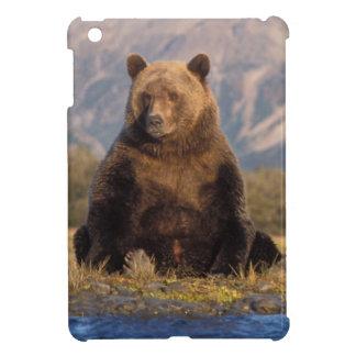 brown bear, Ursus arctos, grizzly bear, Ursus iPad Mini Case