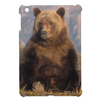 brown bear, Ursus arctos, grizzly bear, Ursus iPad Mini Covers