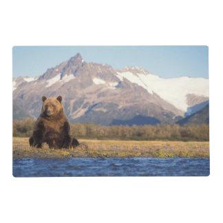 brown bear, Ursus arctos, grizzly bear, Ursus Placemat