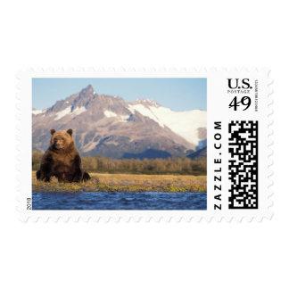 brown bear, Ursus arctos, grizzly bear, Ursus Stamp