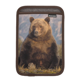 brown bear, Ursus arctos, grizzly bear, Ursus Sleeve For iPad Mini