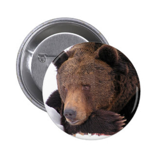 Brown Bear Winter Button