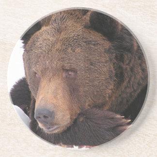 Brown Bear Winter Coasters