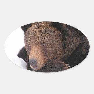 Brown Bear Winter Oval Sticker
