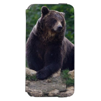 Brown bear incipio watson™ iPhone 6 wallet case