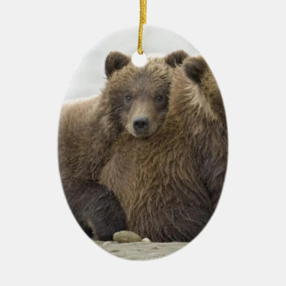 Brown Bears Loving Nature Ceramic Ornament