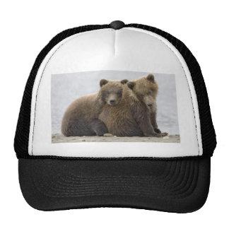 Brown Bears Loving Nature Hat