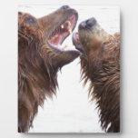 Brown Bears Plaque