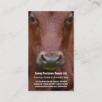 Brown Beef Steer Business Card