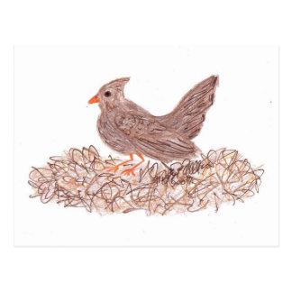 Brown Bird Postcard