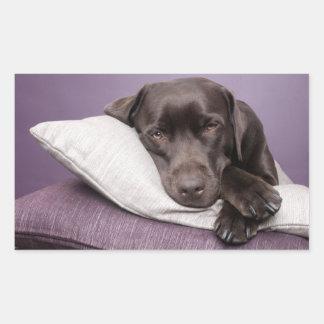 Brown / Black Labrador Retriever Dog Sticker