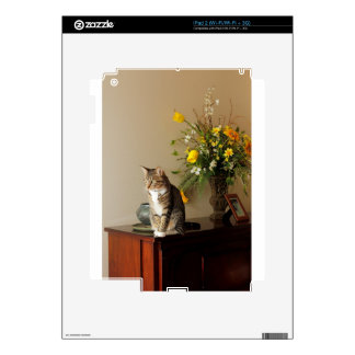Brown black Tabby cat Sitting on piano flowers iPad 2 Decal