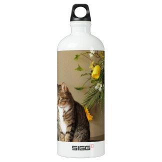 Brown black Tabby cat Sitting on piano flowers Water Bottle