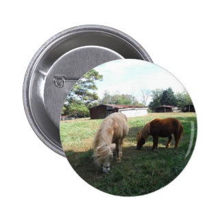 """Brown Blond, Two Miniature Horses, """"Little Pony """" Pinback Button"""