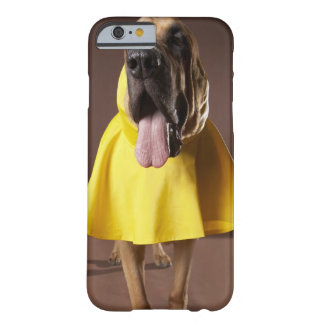 Brown bloodhound dog wearing yellow raincoat barely there iPhone 6 case