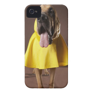 Brown bloodhound dog wearing yellow raincoat iPhone 4 cover