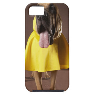 Brown bloodhound dog wearing yellow raincoat iPhone SE/5/5s case