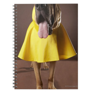 Brown bloodhound dog wearing yellow raincoat notebook