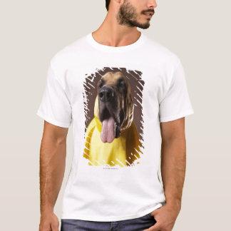 Brown bloodhound dog wearing yellow raincoat T-Shirt