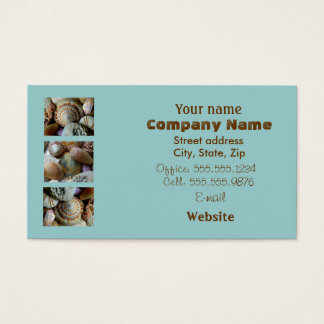 Brown & Blue Seashell Business Card