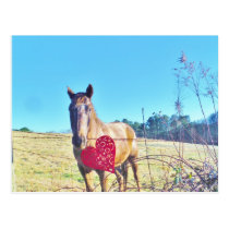 Brown Blue tinted Horse Red Heart Postcard