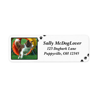Brown Border Collie Agility Label