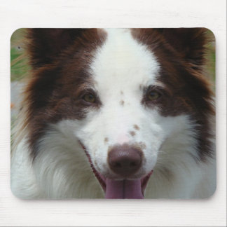 Brown Border Collie Mouse Pad