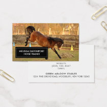 Brown Bucking Horse Photograph Playful and Wild Business Card