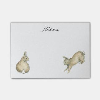 Brown Bunnies - Customizable Post-it Notes
