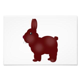 Brown bunny cartoon photograph