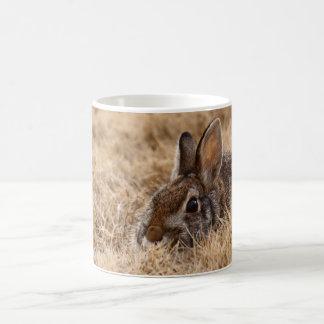 Brown Bunny Mug