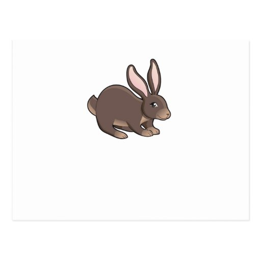 Brown Bunny Post Card
