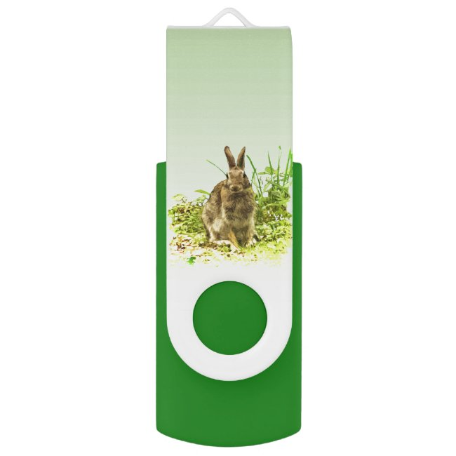 Brown Bunny Rabbit in Green USB Swivel Flash Drive