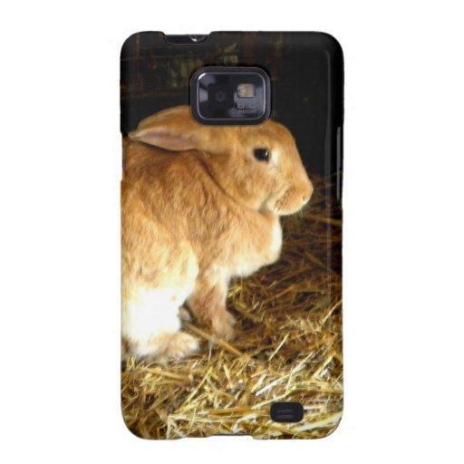 Brown Bunny Samsung Galaxy SII Cover